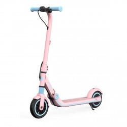 Ninebot eKickScooter Zing E8 Electric Scooter, Pink